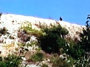Des éléments du renseignement syrien ont pu investir des villages déserts et ravagés. Mais pas totalement sécurisés: des snipers et des francs-tireurs d'Al-Nosra continuent d'harceler les soldats loyalistes.