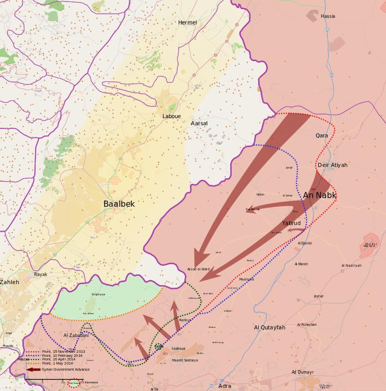 Bataille du Qalamoun 07072015